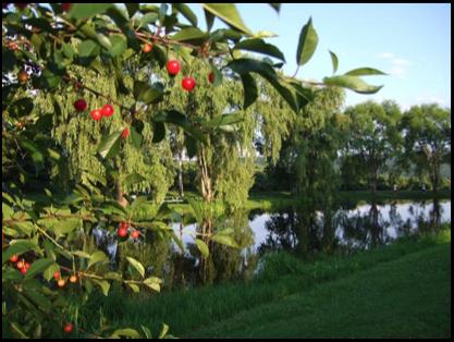 Alysons Orchard Walpole, New Hampshire