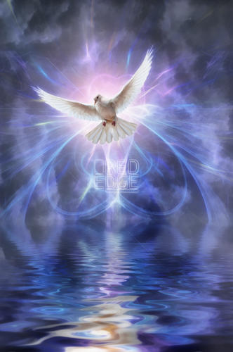 Digital fractal image of white dove flying over water by John Edwards