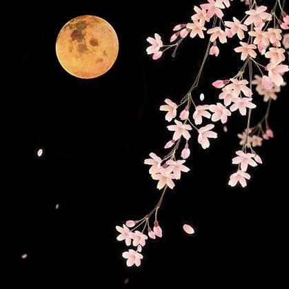 Spring Flower Moon