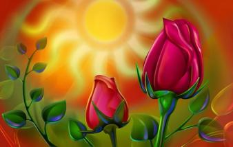 1094592-Sun-light-rose-600x380