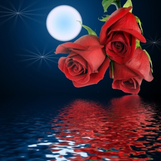 moon_flower