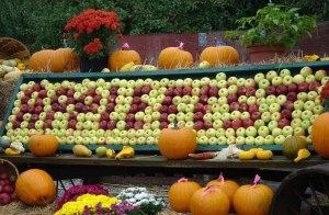 all-about-new-england-fun-facts-for-kids-image-of-the-new-england-apple-festival