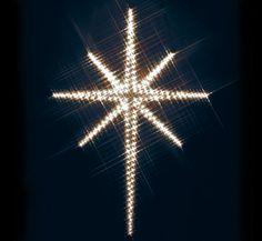 northern-star-in-lights
